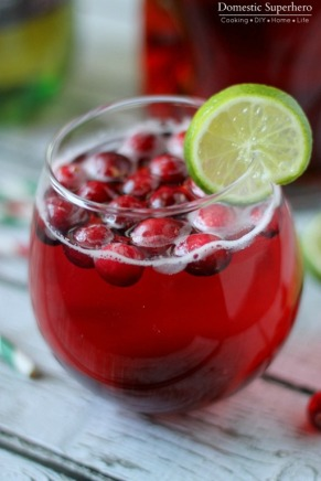 cranberry-ginger-holiday-cocktail