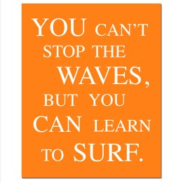 you-cant-stop-the-waves-but-you-can-learn-how-to-surf13