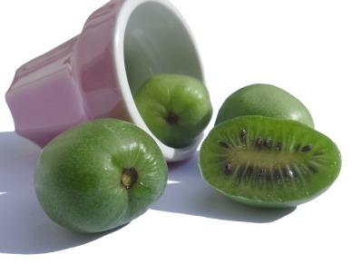 kiwi-berry-2122341_960_720